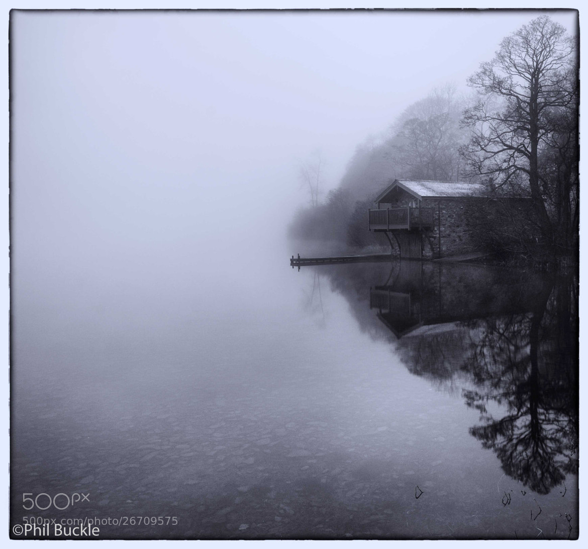Photograph Misty Duke by Phil Buckle on 500px
