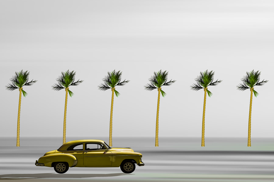 Car and palms by Inge Schuster on 500px.com