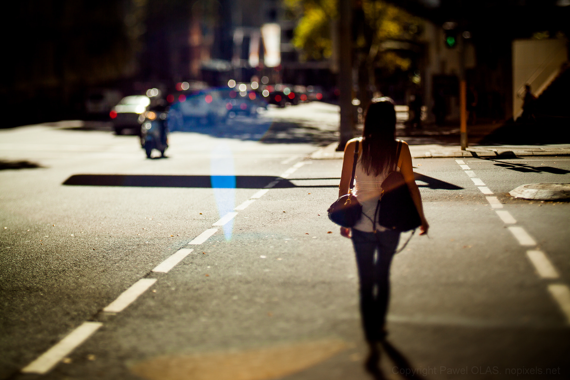 Photograph stalking by Pawel Olas on 500px