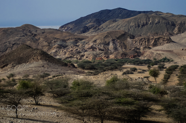 Photograph An Arabian Landscape - Colour by julian john on 500px