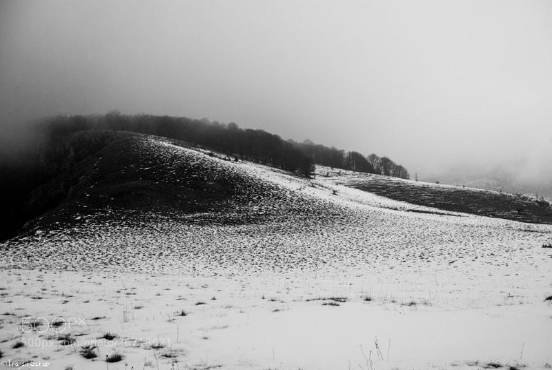 Photograph Dark, mist, .... by Scrob Traian on 500px