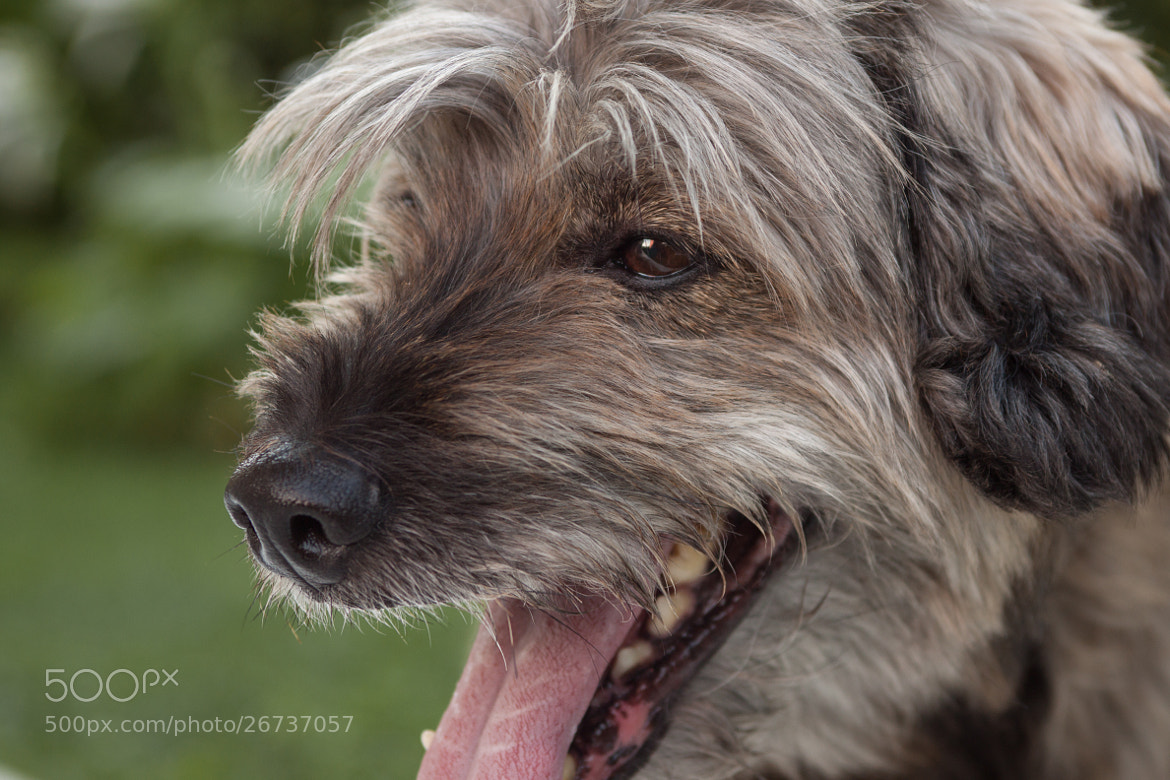 Photograph MAX by Claudio Bozzini on 500px