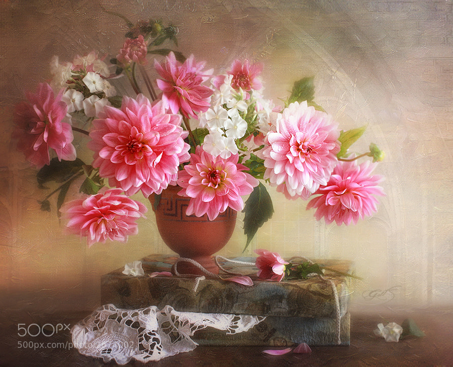 Photograph Pink evening in a gift by Luiza  Gelts -            Луиза  Гельтс on 500px