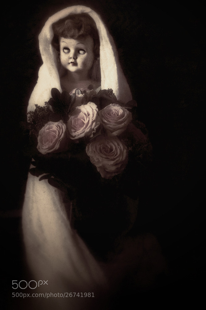 Photograph the bride... by Leila Raymond on 500px