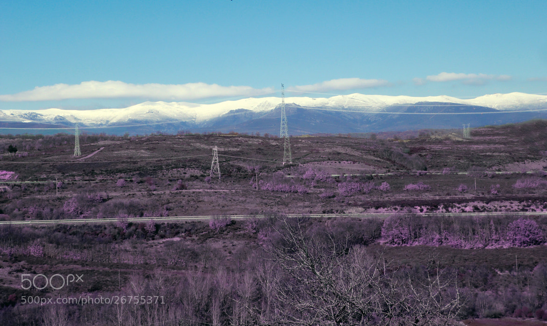 Photograph Invierno by Noelia Martín on 500px
