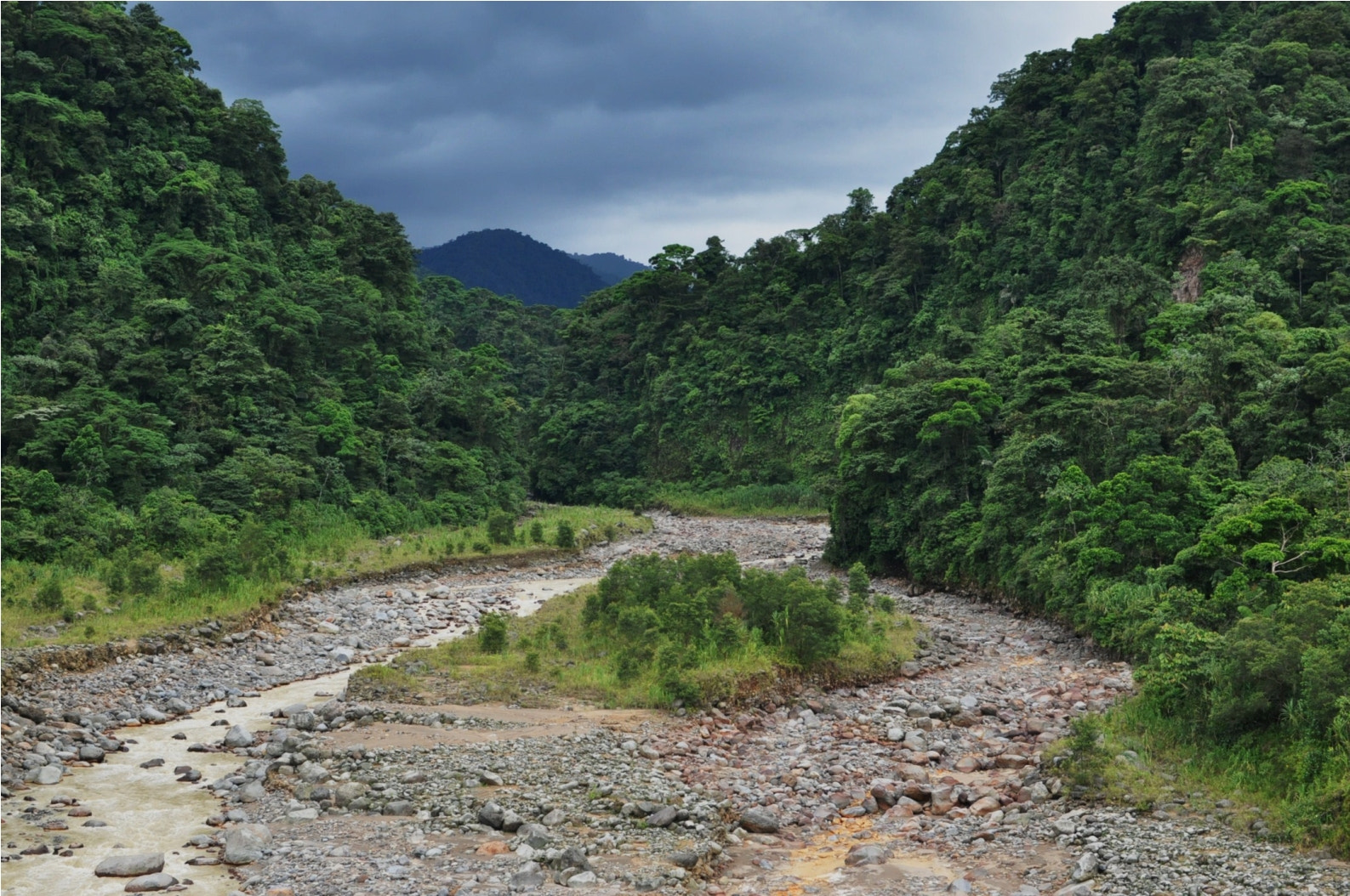 Photograph Rain Forest by Jee Say on 500px