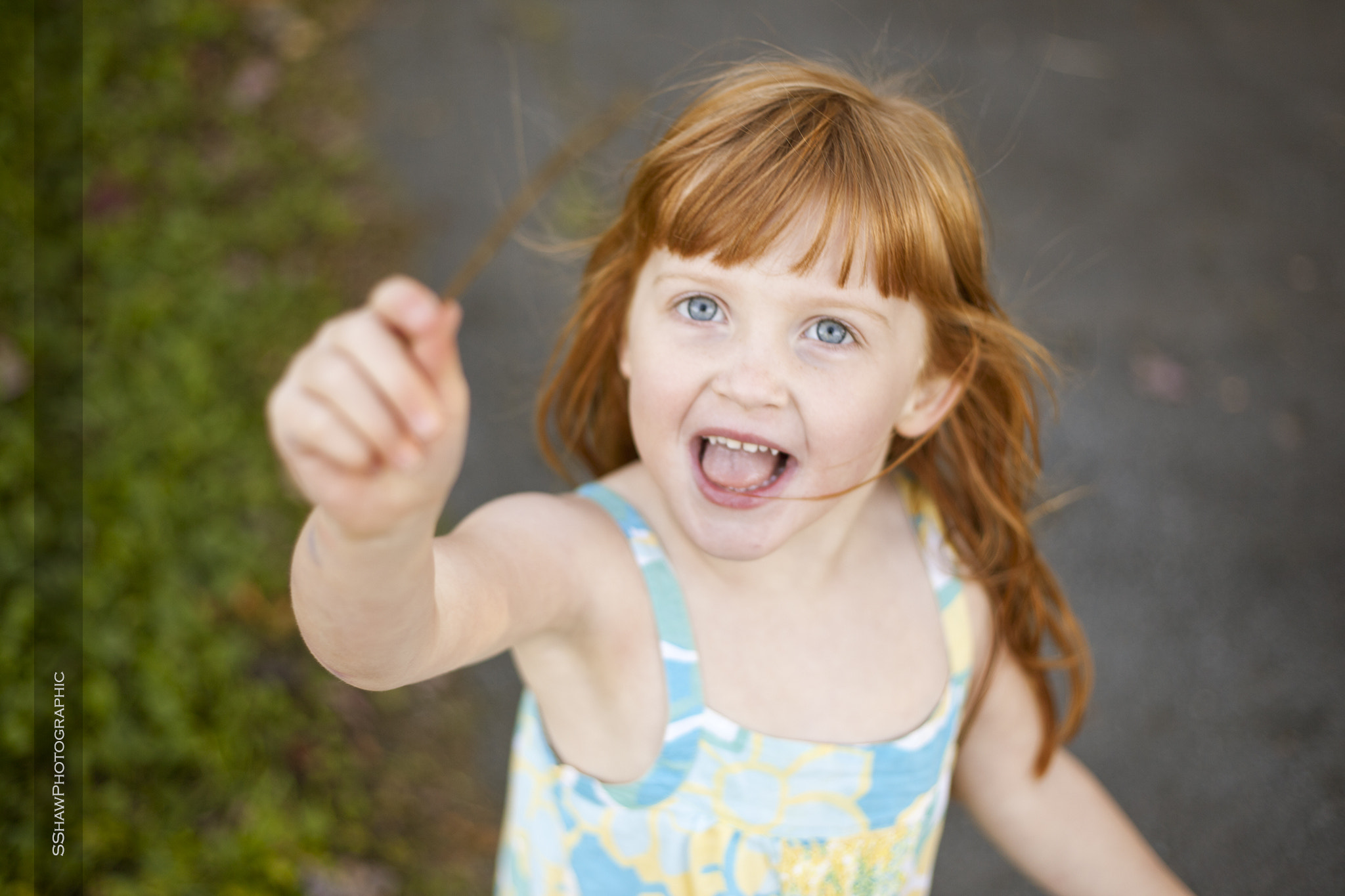 Photograph Summer Fun by Shane Shaw on 500px