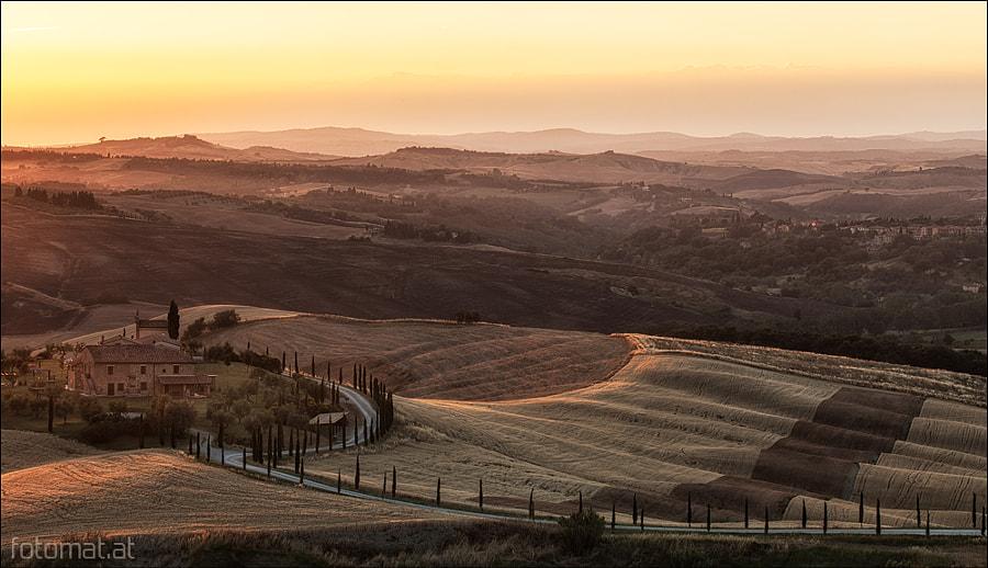Tuscan Fall