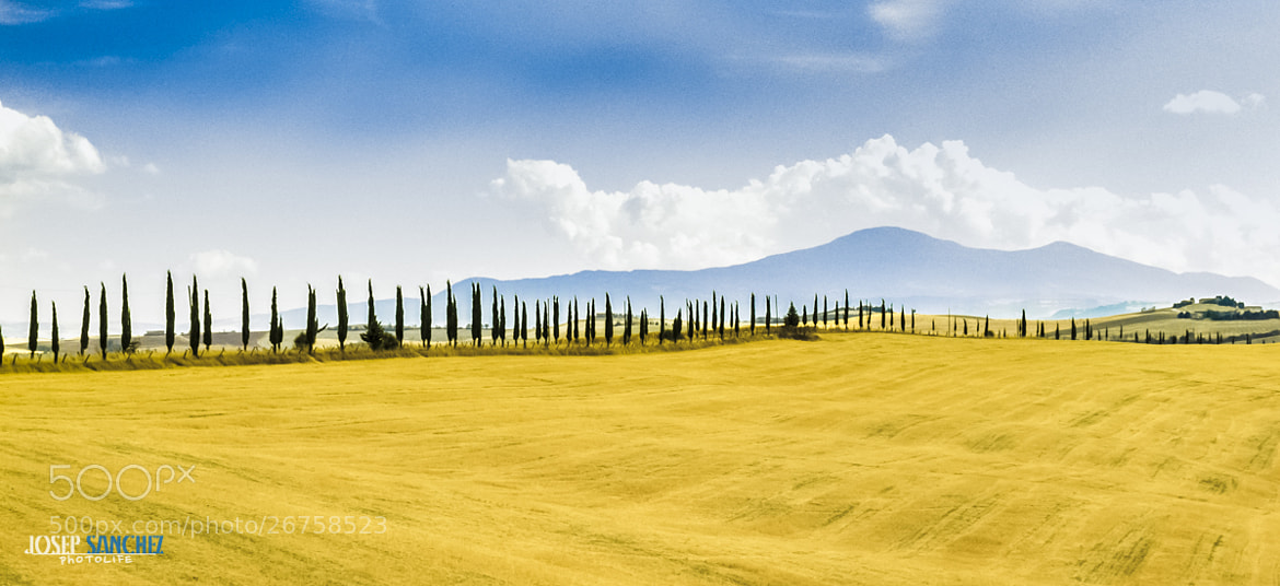 Photograph Toscana by Josep Sánchez on 500px