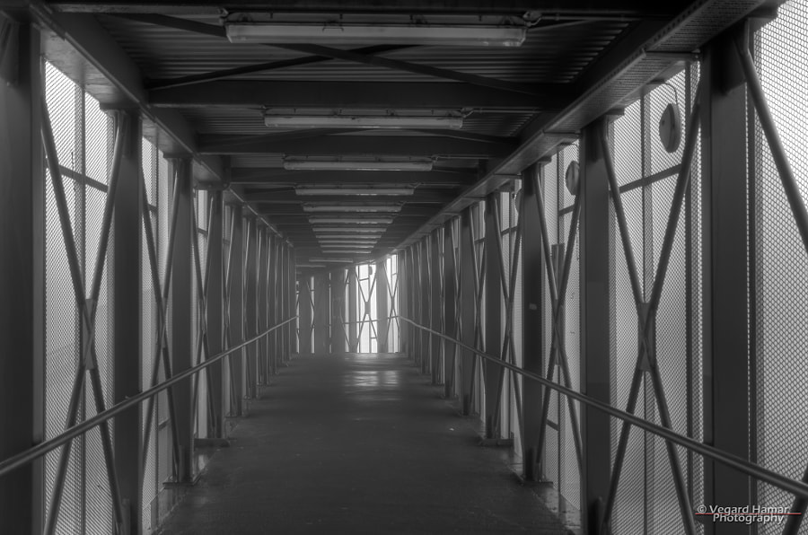 Taken inside the footbridge going from Oslo Central Station to the Oslo Opera House, with thick fog hiding everyting outside.
