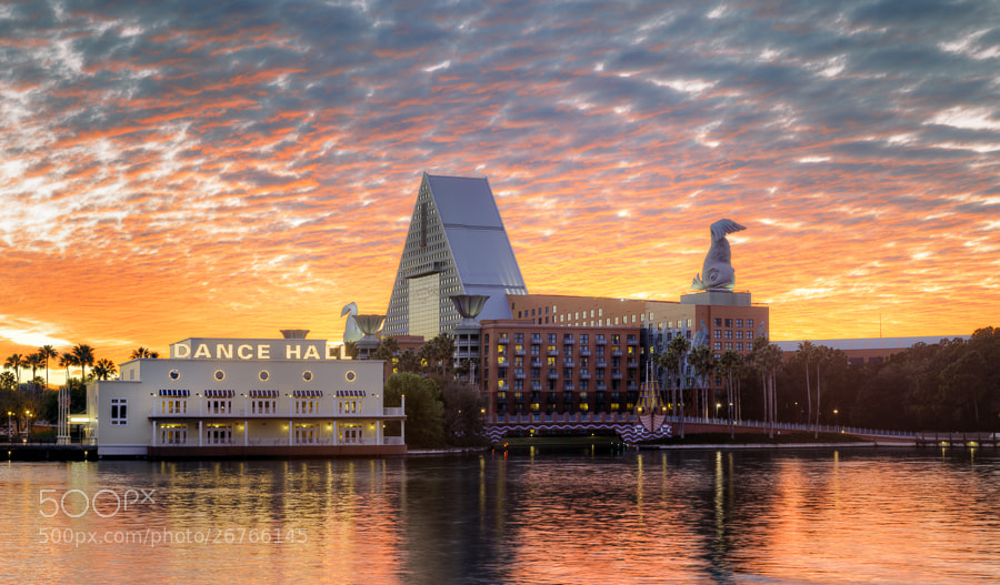 Photograph Disney Dolphin and Dance Hall, Disney World, Florida. by Stanton Champion on 500px