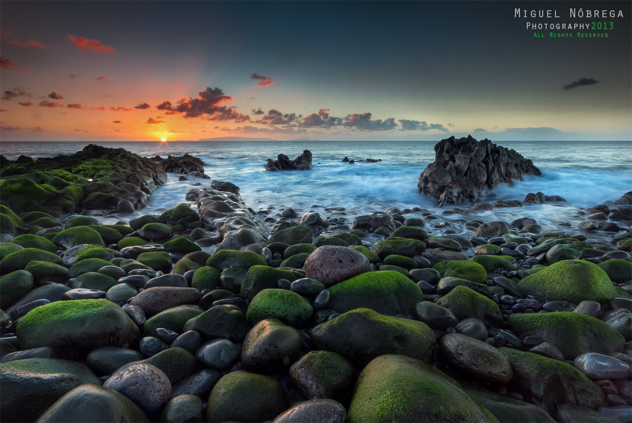 Photograph Perfect Harmony by Miguel Nóbrega on 500px