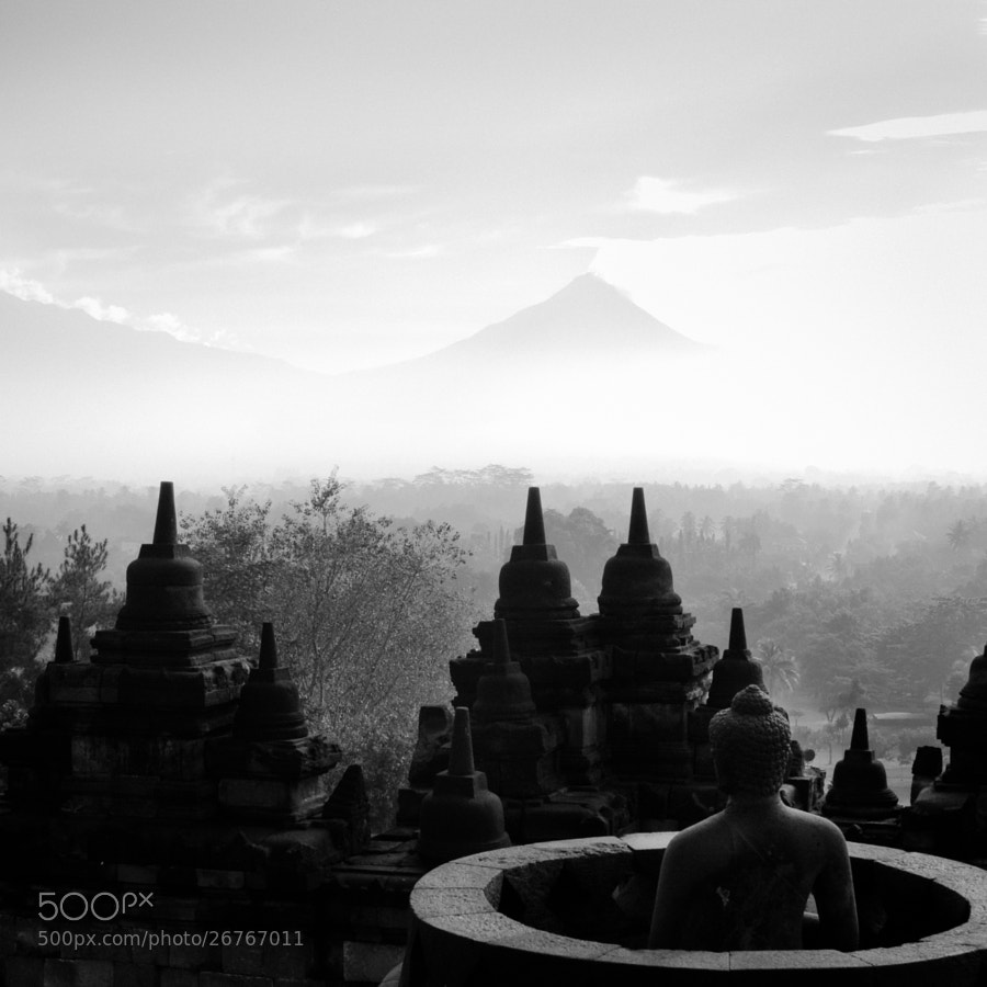 Photograph Mist - Borobudur by Olivier Bergeron on 500px