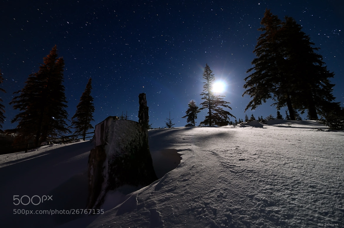Photograph Winter night by Alin Balanean on 500px