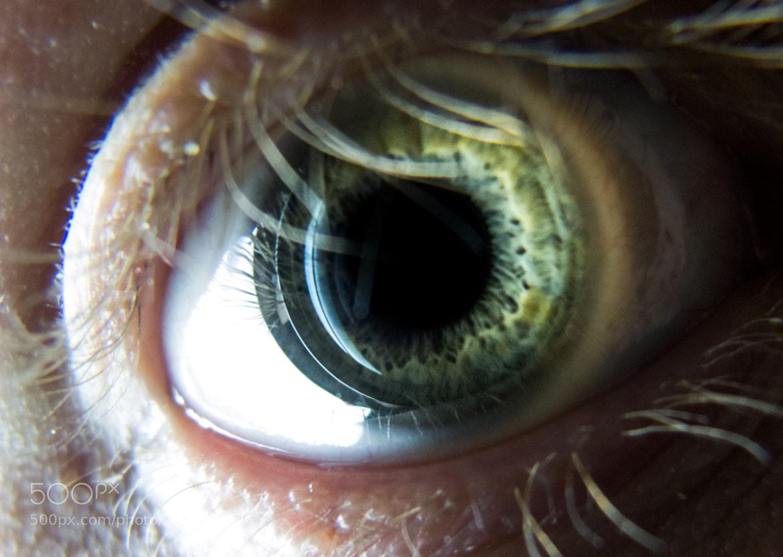 Photograph Eye by FedericoPH  on 500px