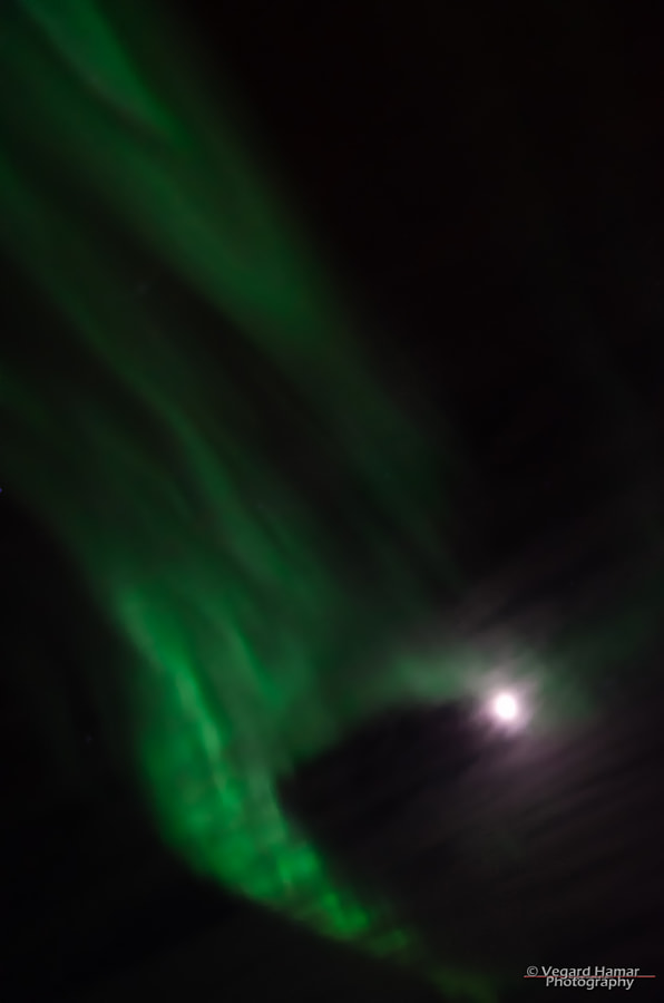 Northern lights and the moon