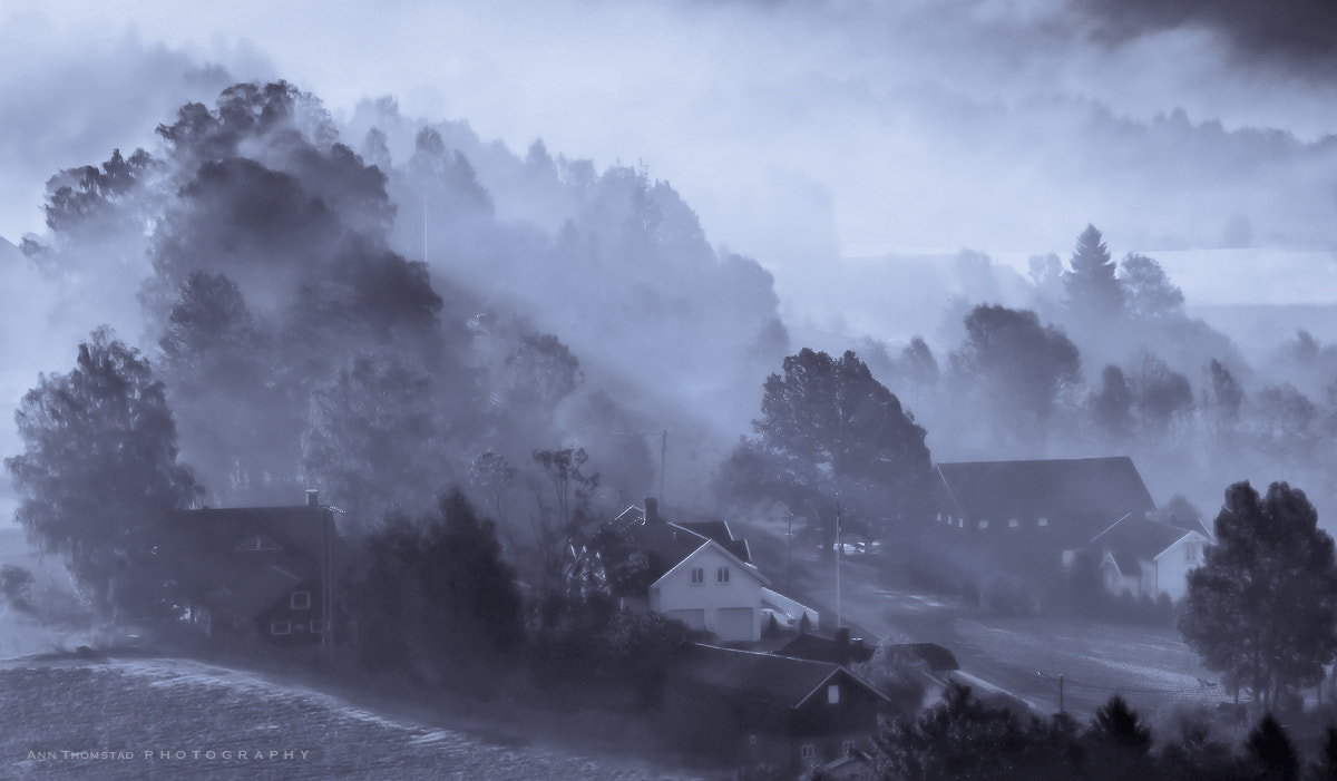 Photograph Farms in the mist by Ann Thomstad on 500px