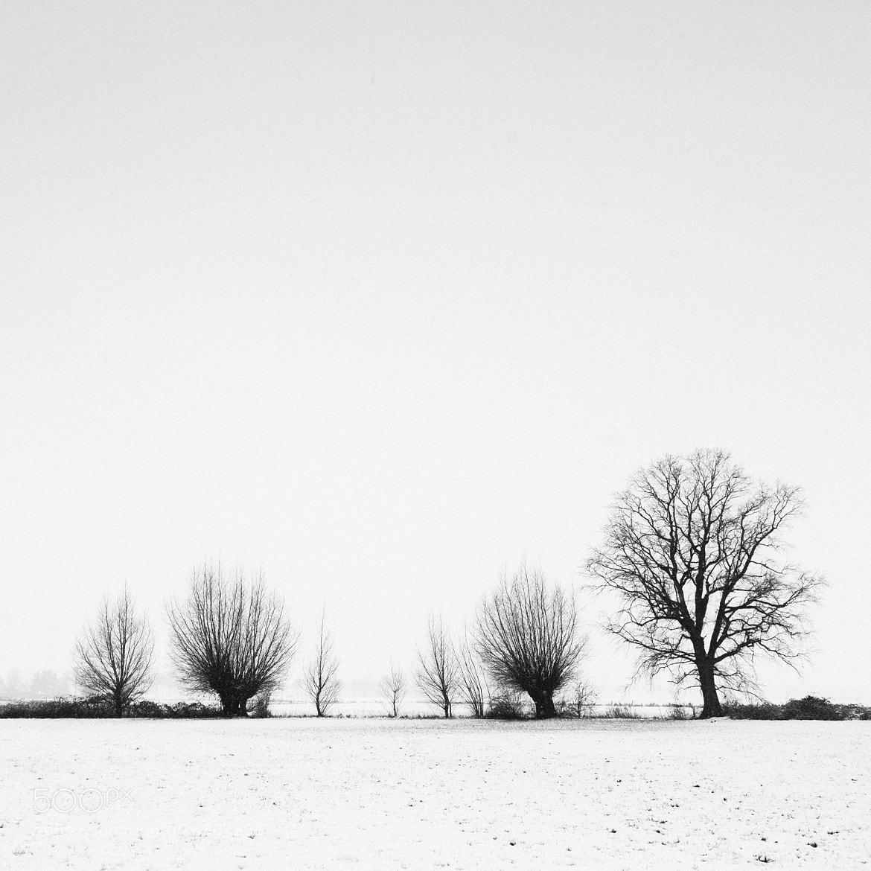 Photograph Deutsche Snow Landscape by Mickaël LIBLIN on 500px