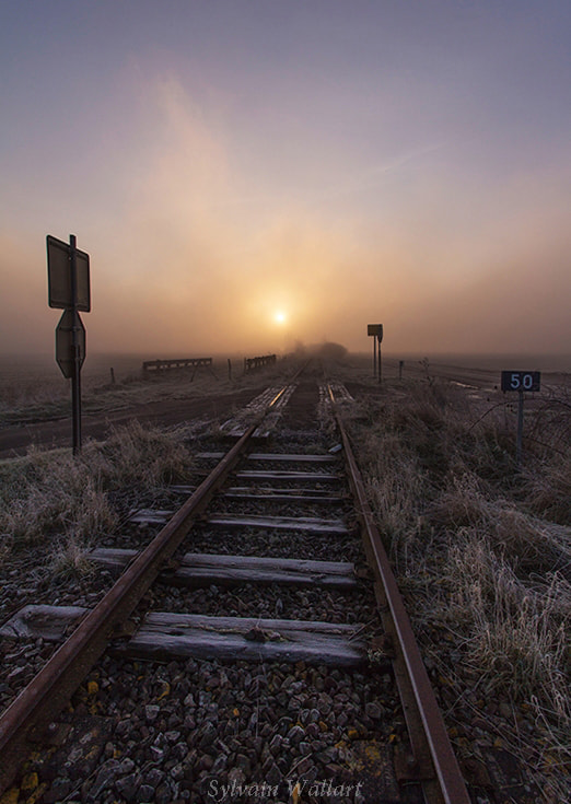 Photograph Sunrise on the rails by Sylvain Wallart on 500px