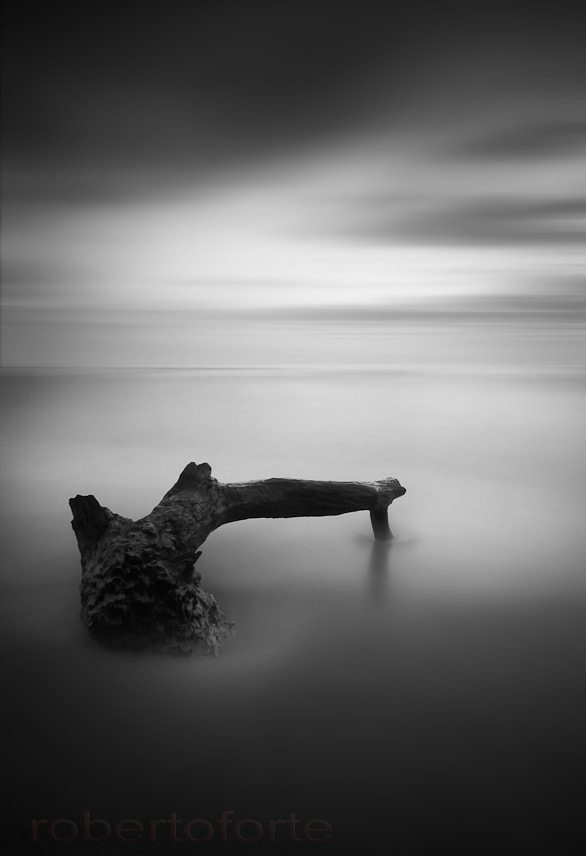 Photograph Useless II by Rob Forte on 500px