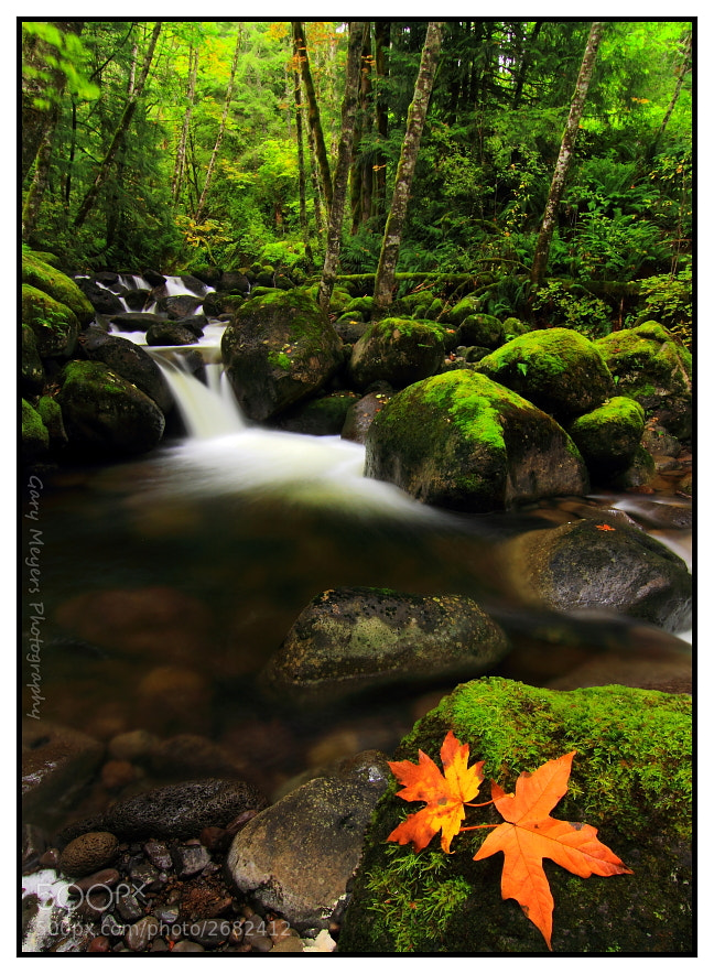 Photograph Boulder Creek by Gary Meyers on 500px