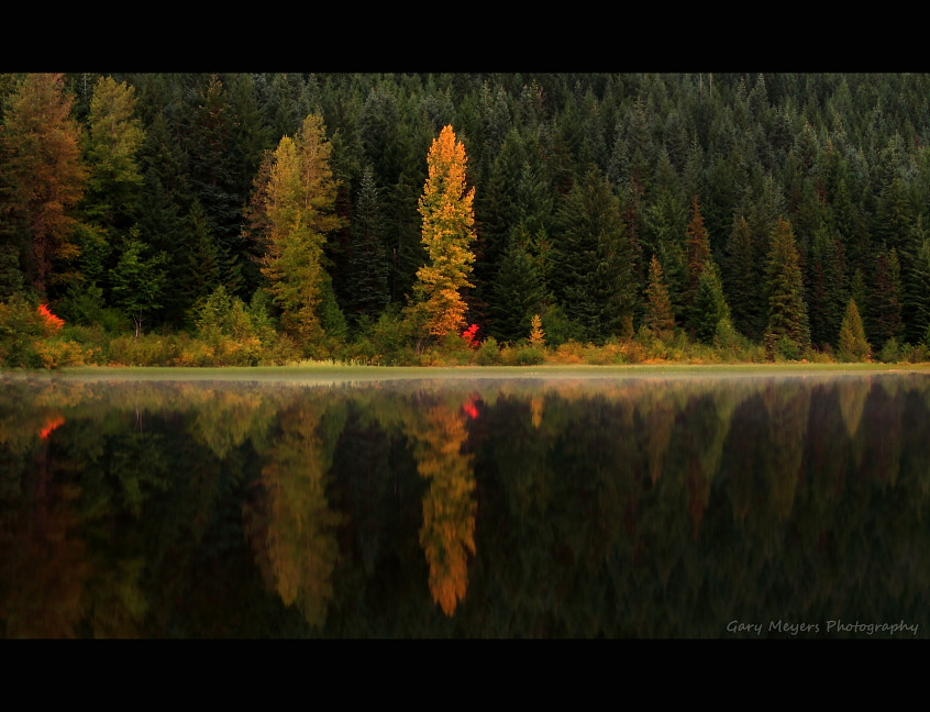 Photograph Fall at the lake by Gary Meyers on 500px