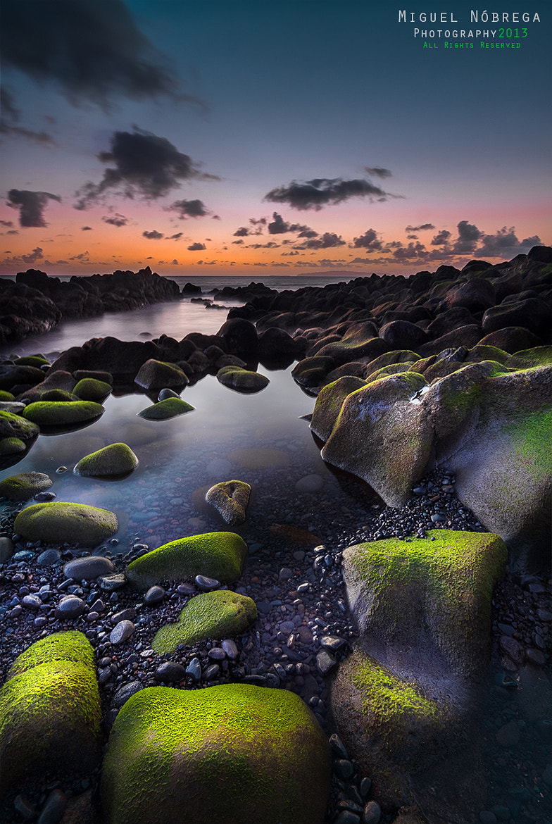Photograph Green Rocks II by Miguel Nóbrega on 500px