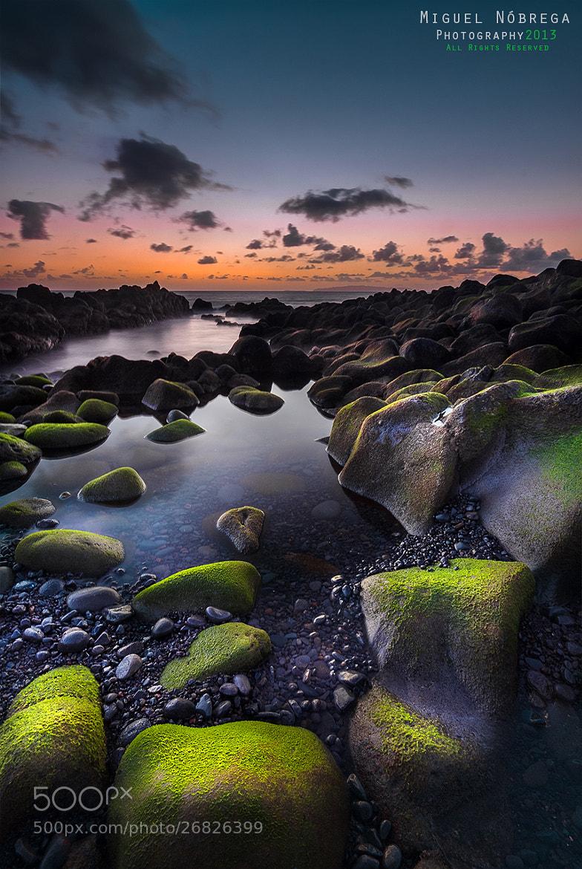 Photograph Green Rocks II by Miguel Nóbrega on 500px