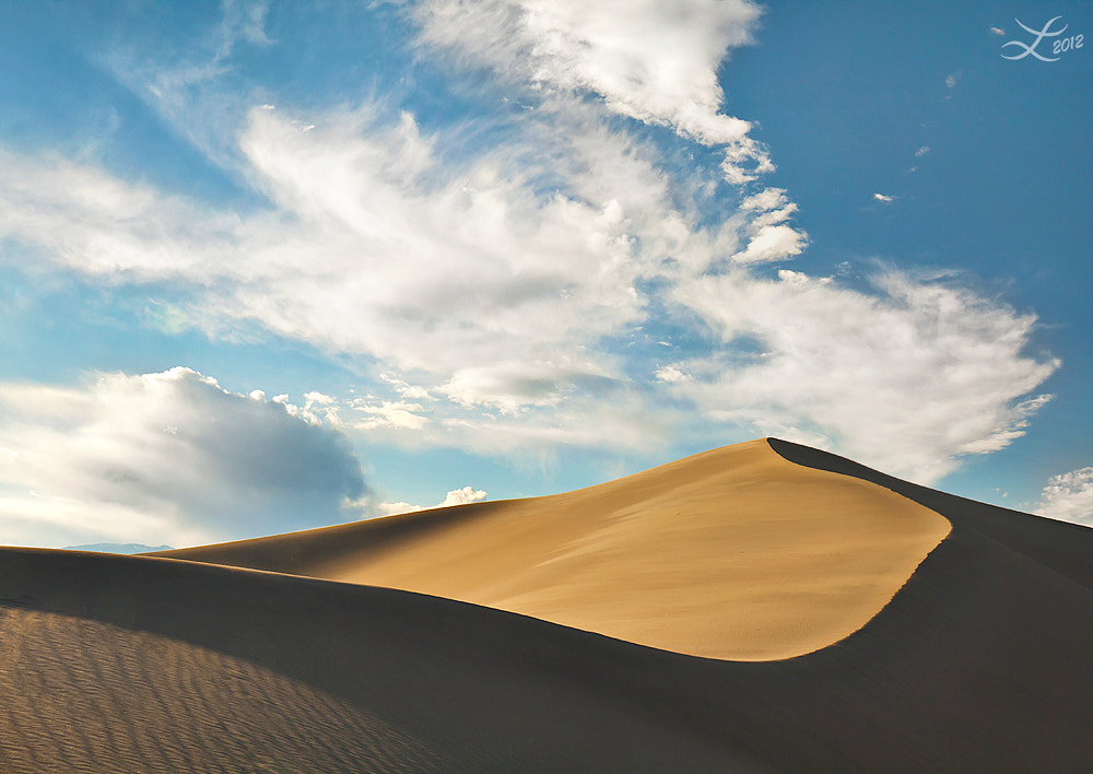 Photograph Desert Dreams by Laura Knauth on 500px