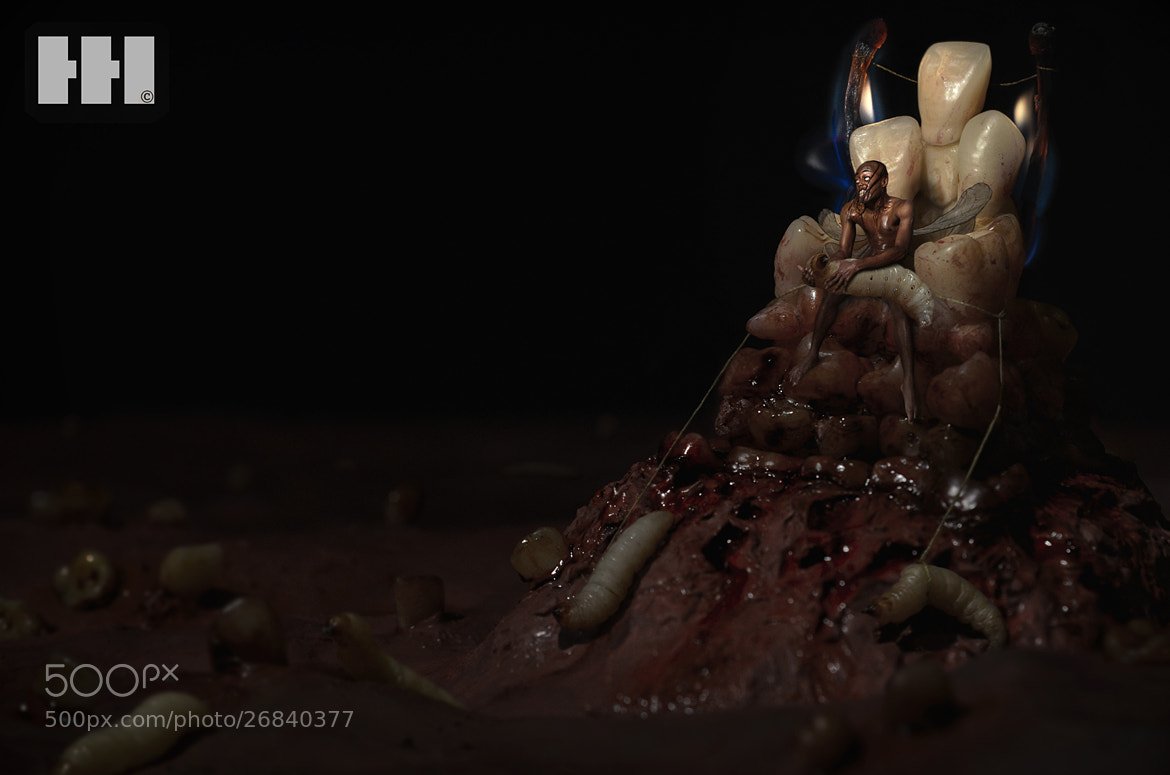 Photograph The Tooth Fairy King  by Harry Hussein on 500px