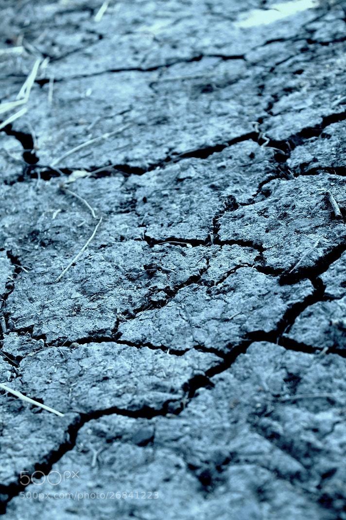 Photograph barren land by salman arif on 500px