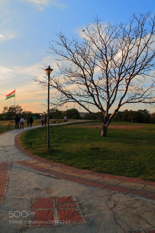 Photograph walk in the park by salman arif on 500px