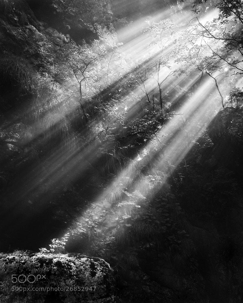 Photograph Chosen by Kristjan Rems on 500px