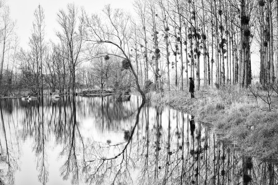 Photograph Forest reflections by Maryana Lemak on 500px