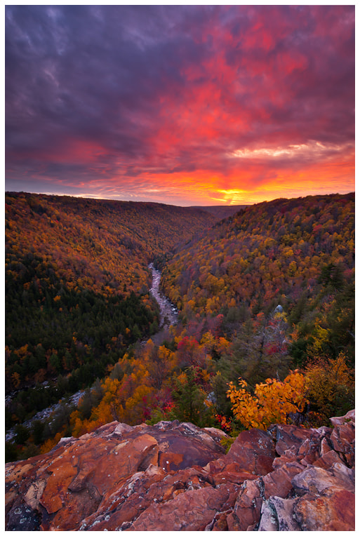 Photograph Neverending Autumn by Joseph Rossbach on 500px