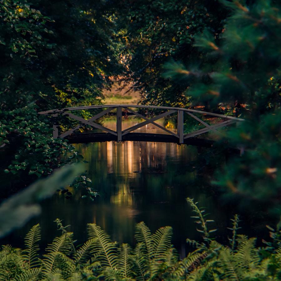 bridge von dirk derbaum auf 500px.com