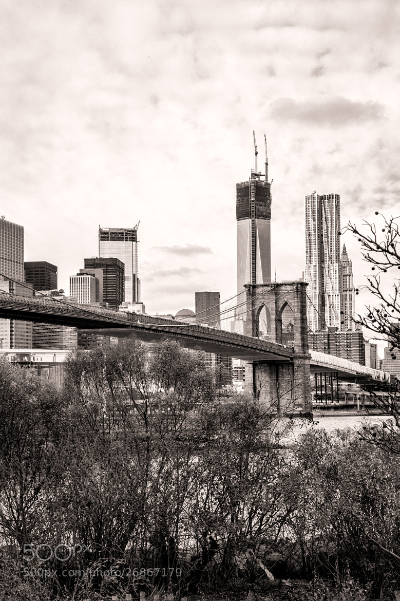 Photograph Brooklyn Bridge B & W by Scott Nelson on 500px