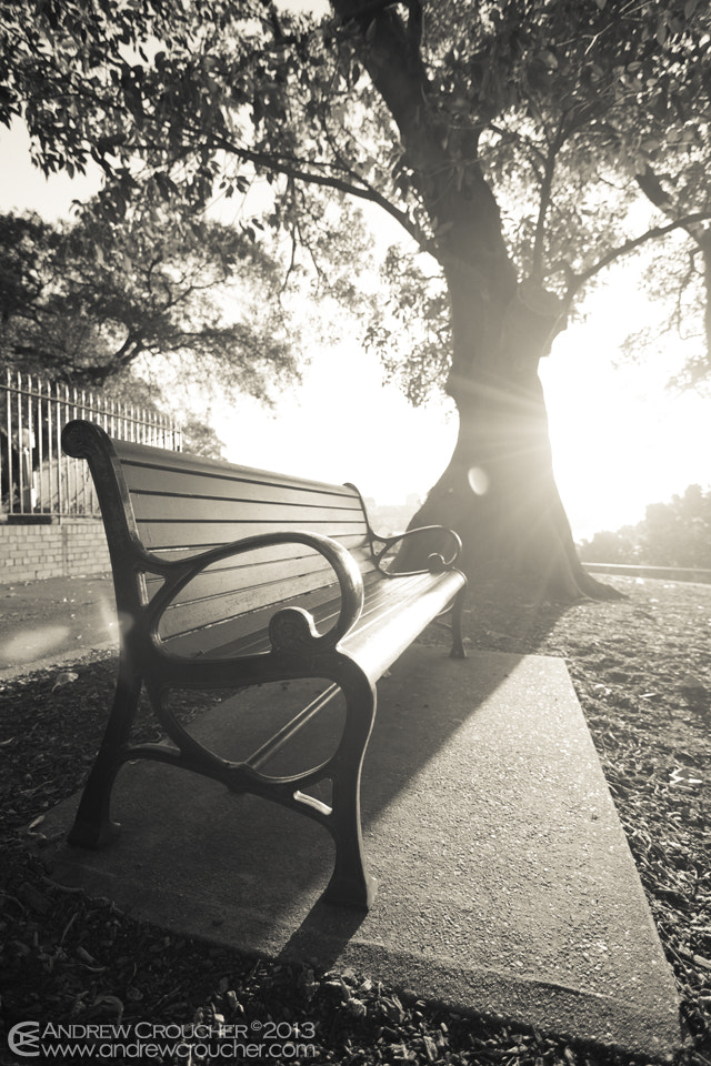 Photograph Classic Park Chair by &rü C on 500px
