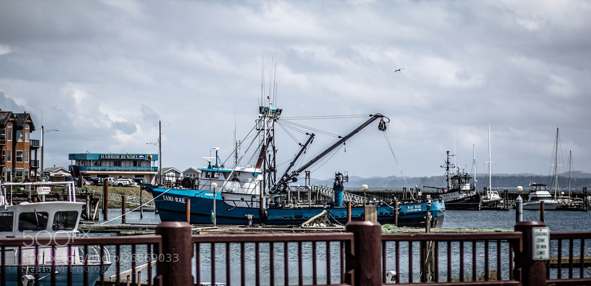 Photograph Fishing boat at Westport Marina by Michael Williams on 500px