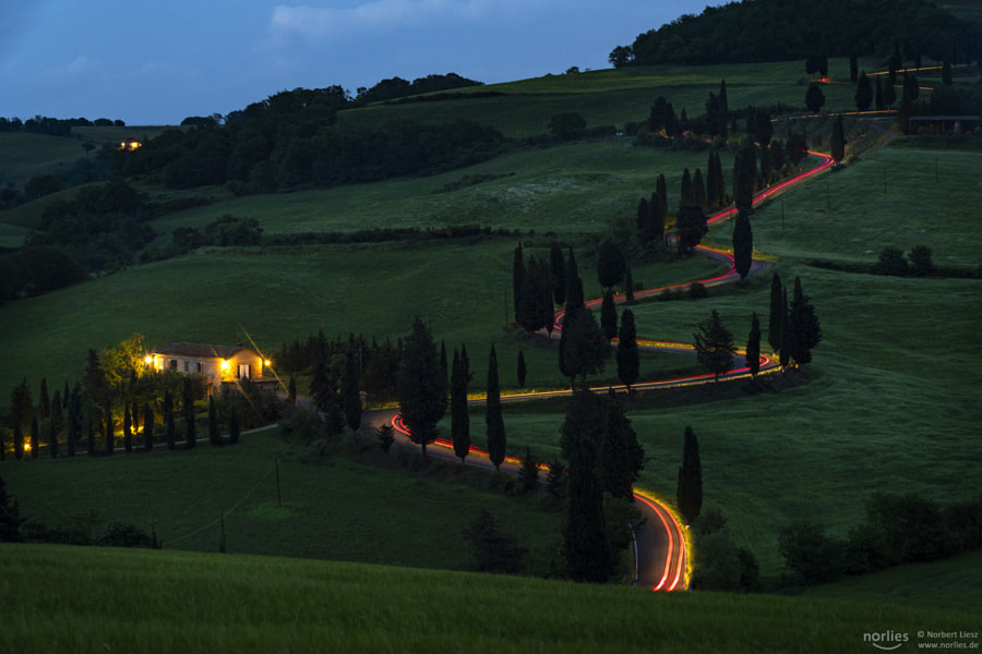 luminous road, автор — Nᴏʀʙᴇʀᴛ Lɪᴇsᴢ на 500px.com