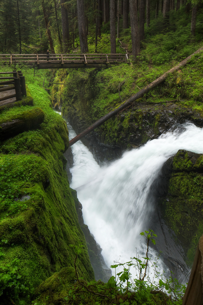 Photograph Solduc Falls by Frank Kehren on 500px