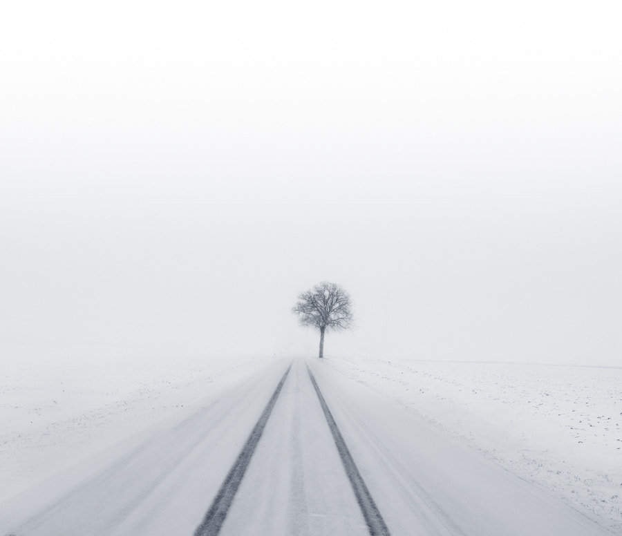 Photograph Tracks in the snow by Rene Schmidt on 500px