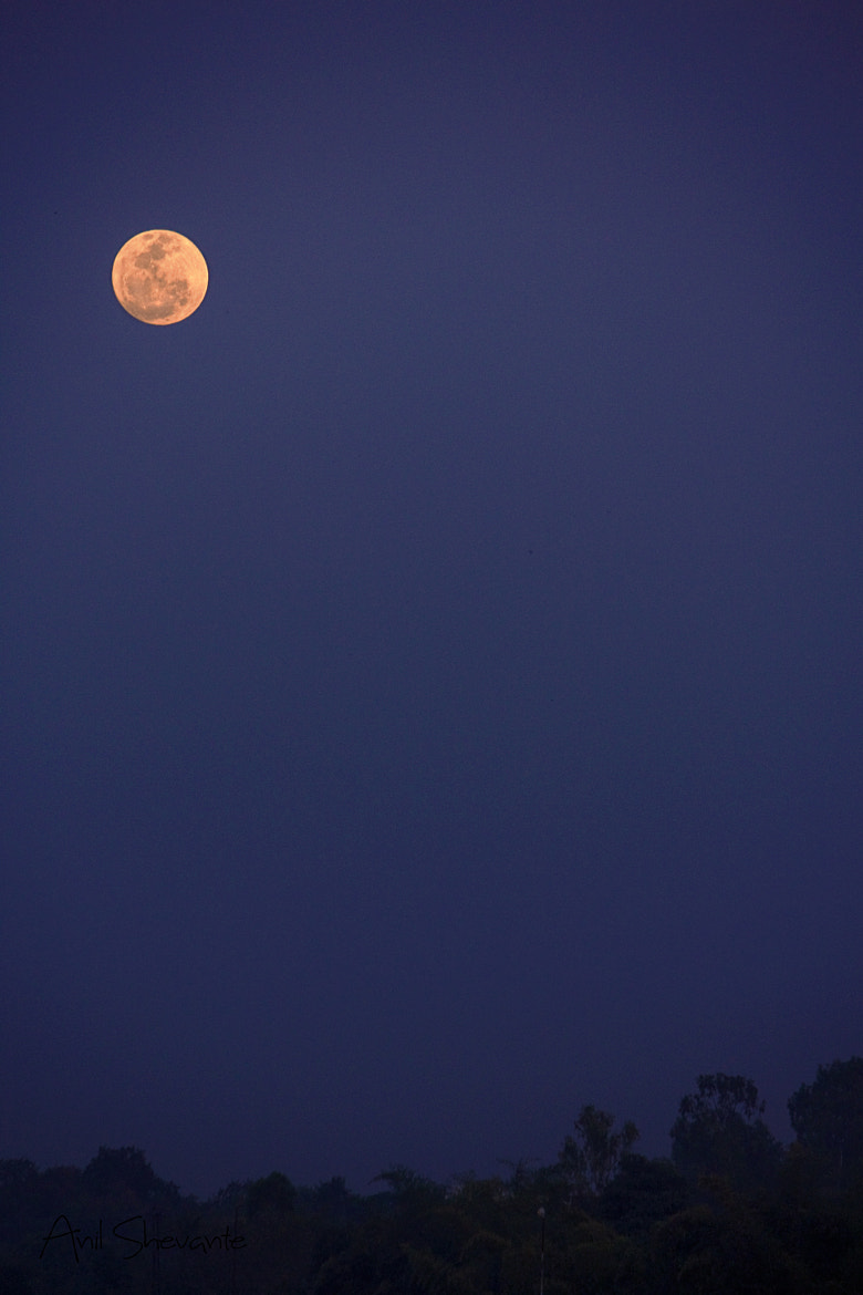 Photograph Full Moon!! by Anil Shevante on 500px