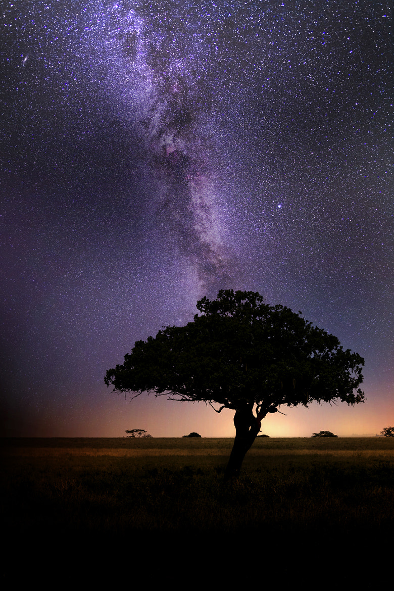 Photograph Milky Way by NDStudio Fotografi on 500px