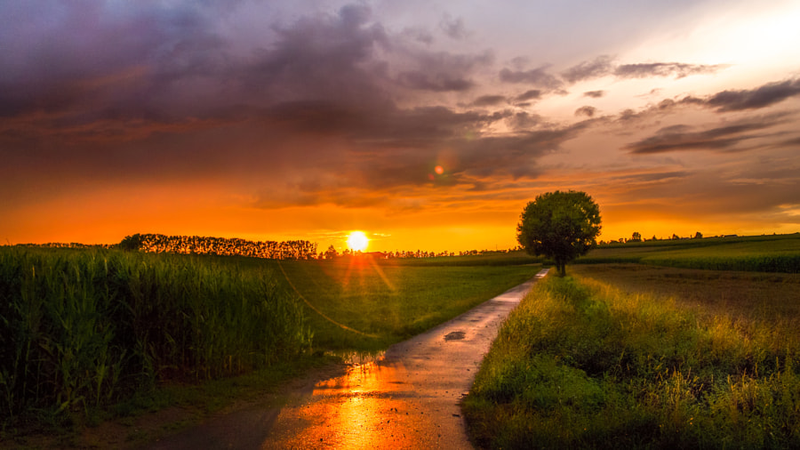 *sunny trails* by Ralf Thomas on 500px