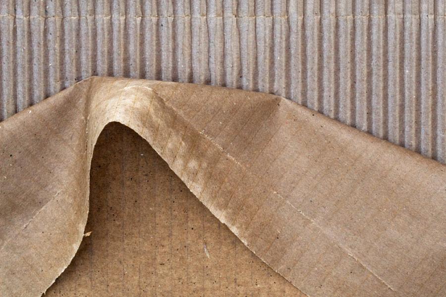Décollé (Peeling de Christine Druesne sur 500px.com