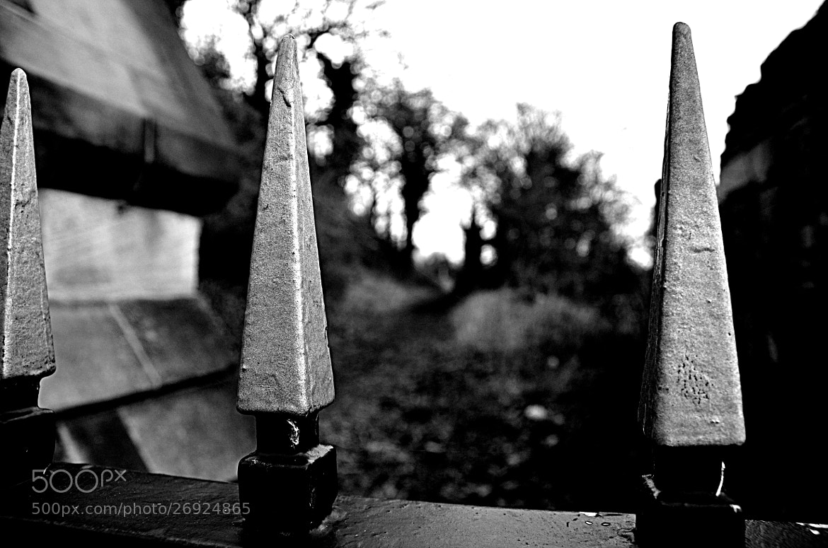 Photograph Cemetery Gate by MalekPhotography on 500px