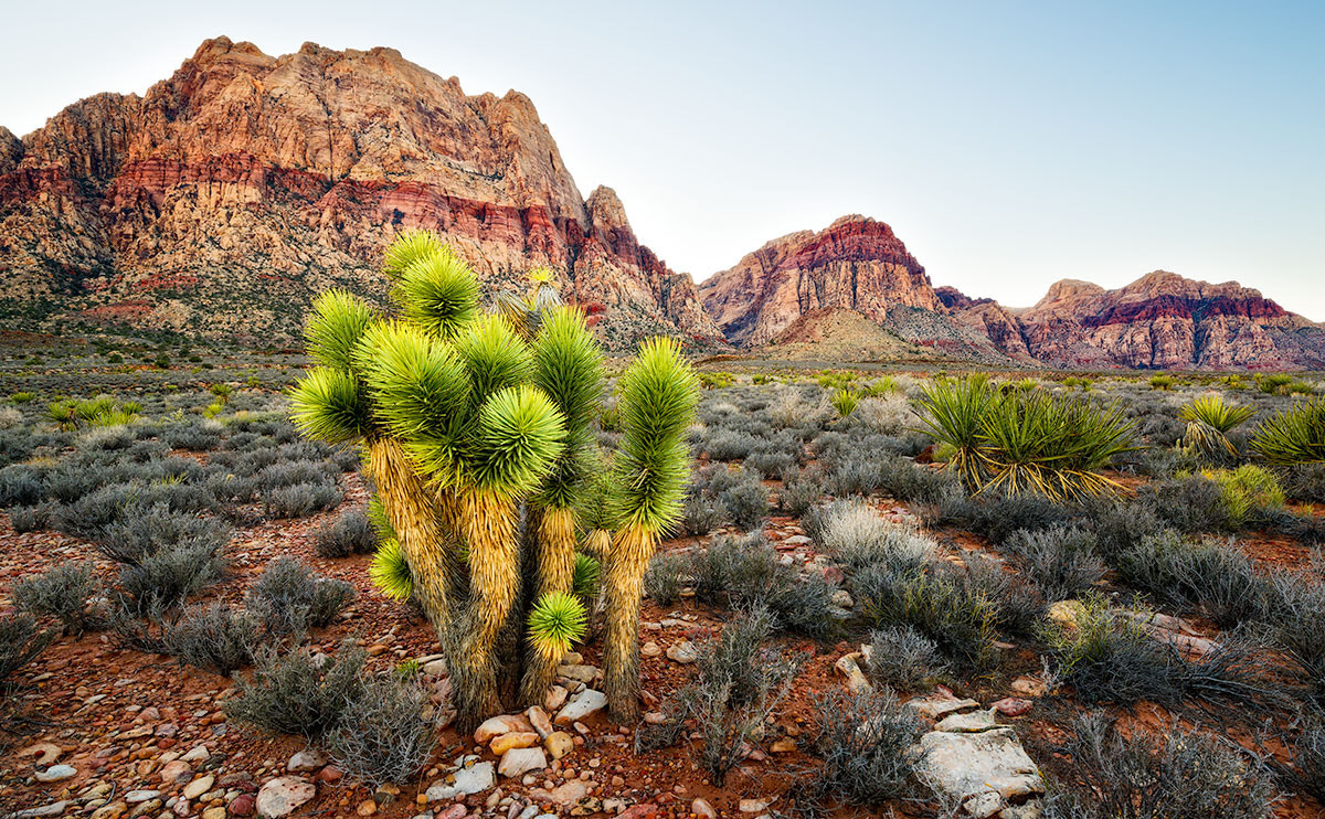 Photograph Sun setting on Red Rock Canyon by Ben Hearthside on 500px