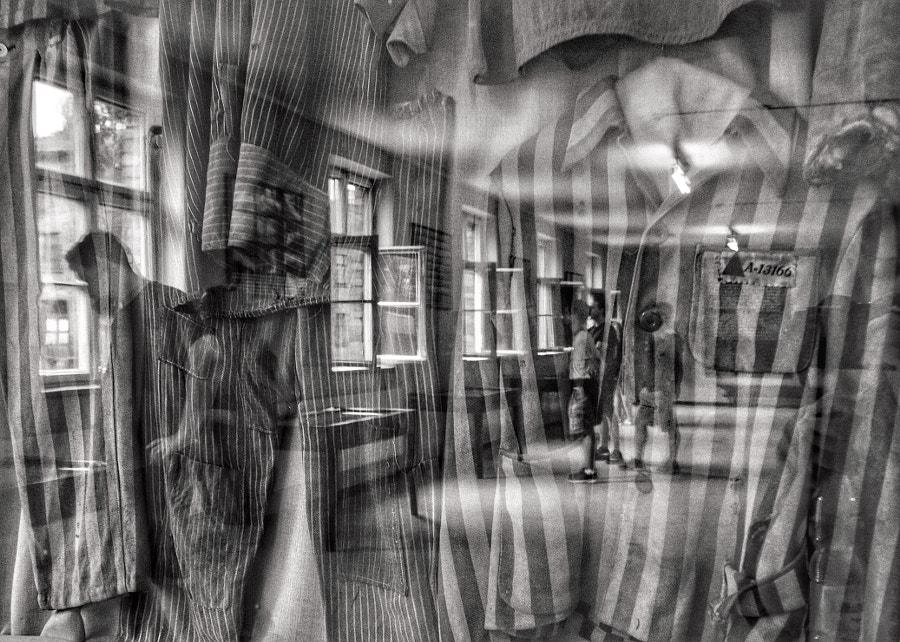 ..through the lens of traumatic history. by Aleksandra Gaborek on 500px.com