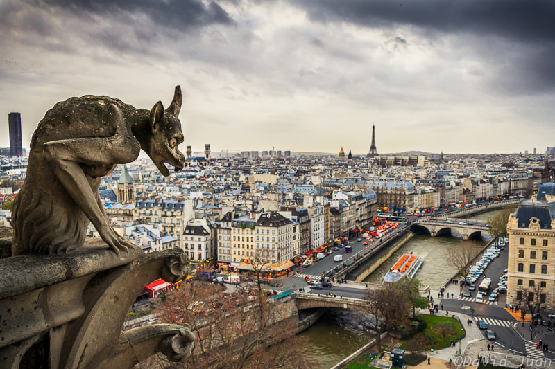 Photograph I'm hungry for tourists by David Juan on 500px